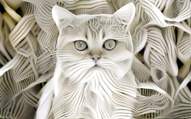 Ivory  Cat by eReSaW