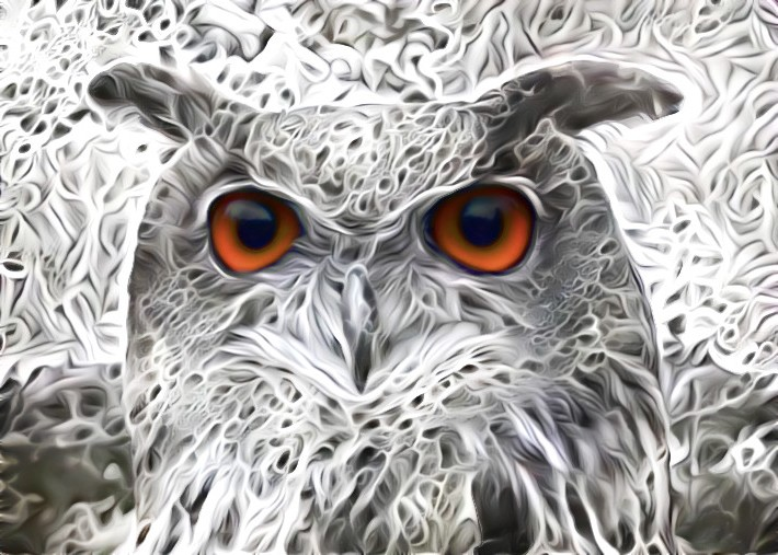 Snowbound Owl by eReSaW