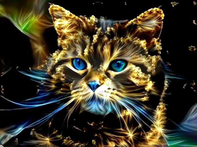 Starlight cat  by eReSaW