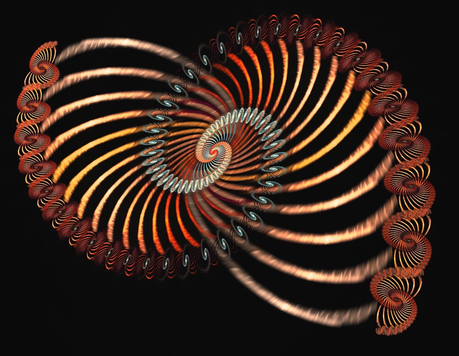 spiralized spiral