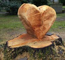 Do trees have hearts ?