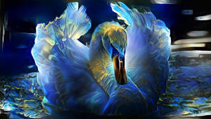 Be a swan, swim through every adversity