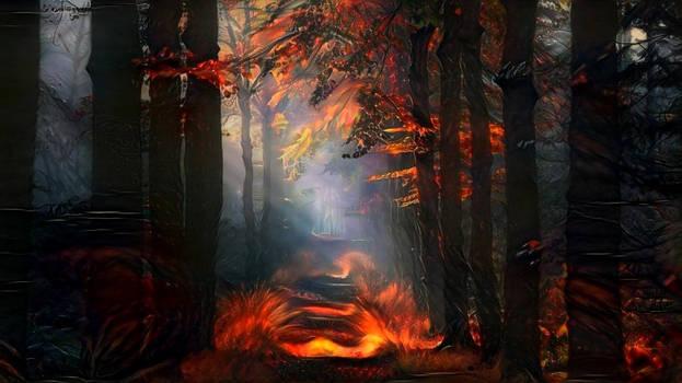 When trees burn ...