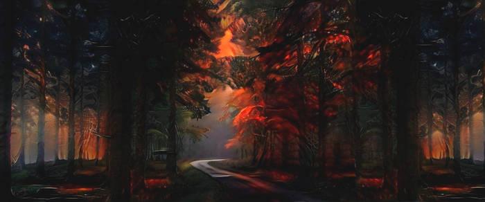 Even in the darkest forest ...