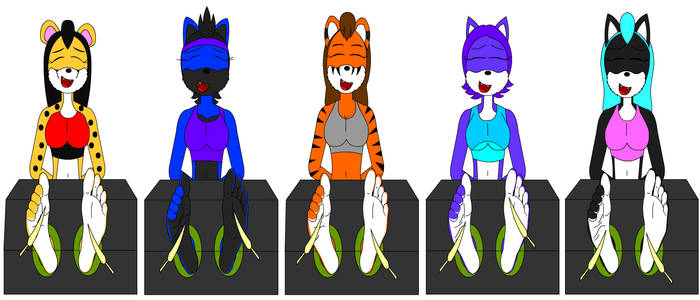 Five Felines