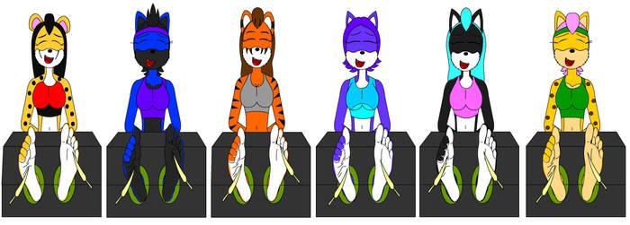 Six Felines