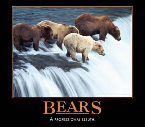 Bears Motivational