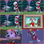 Pup-Fu Marshall