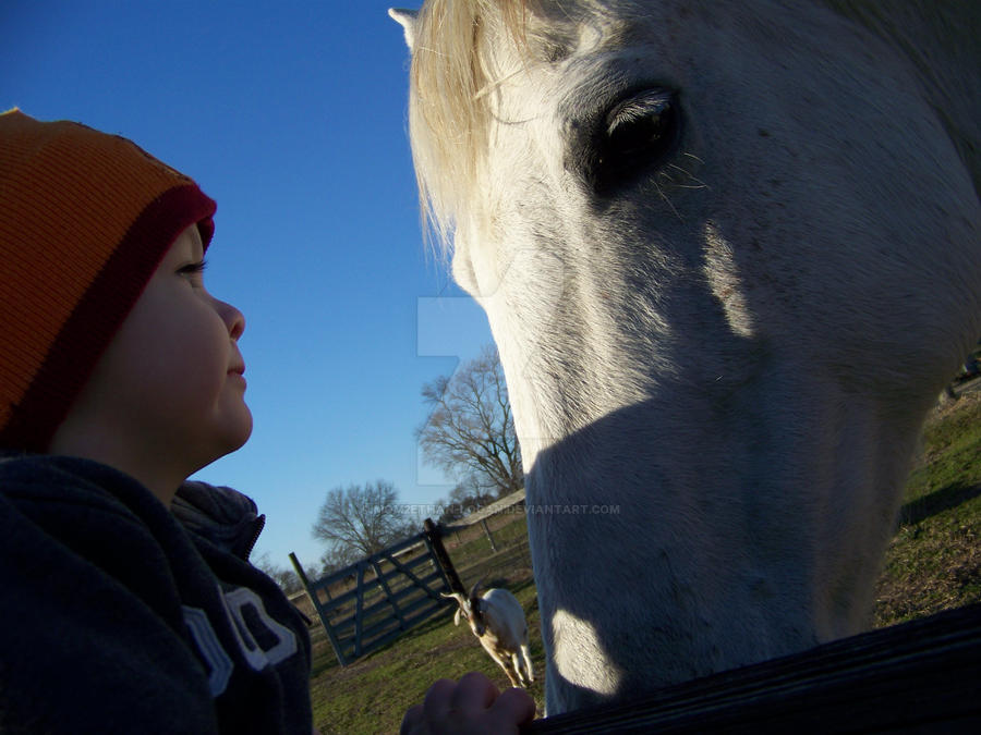 Ethan J and the horse by mom2Ethan-Logan