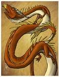 Serpent Dragon Colored