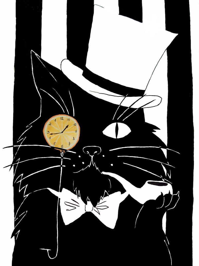 The Black Cat by snorcack