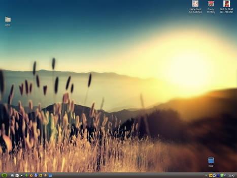 Desktop 8 VI 2008