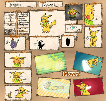 PMD Reference Sheet Saphire