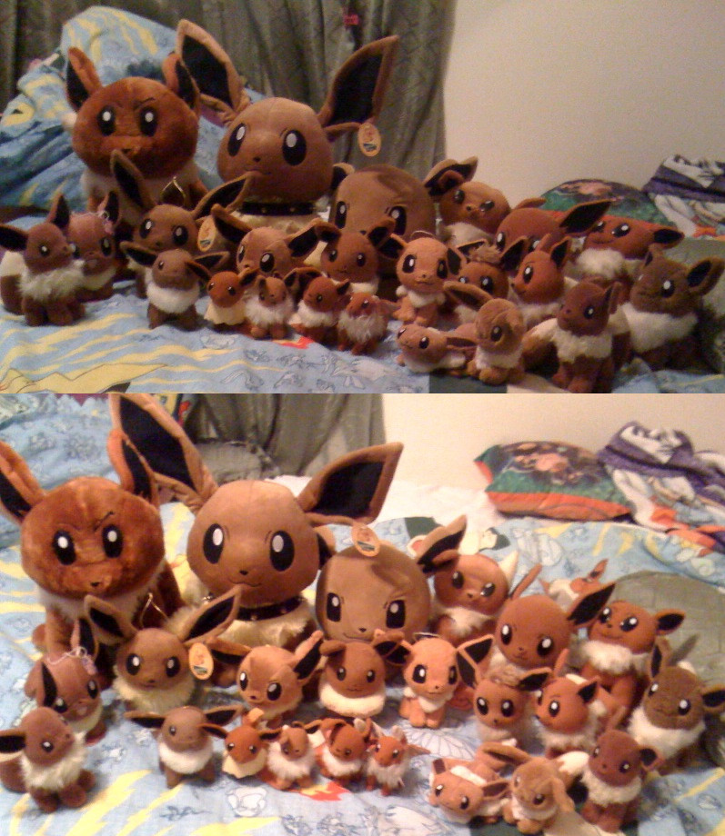 My Huge Eevee Plush Collection by Eevee-Kins