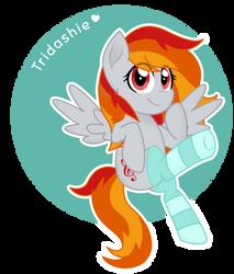 Gift: Tridashie by superAnina