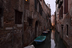The vehicles of venice by mossyfrog