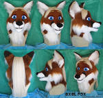 Axel Fox Head
