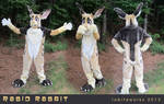 Rabid Rabbit Fursuit