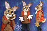 Bunny Partial Suit