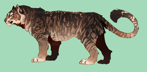 new tigersona