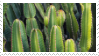 1 / catus stamp by lonelymattress