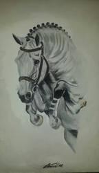 Jumping horse II