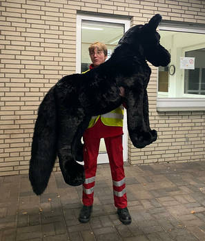 BIG BLACK WOLF PLUSHIE