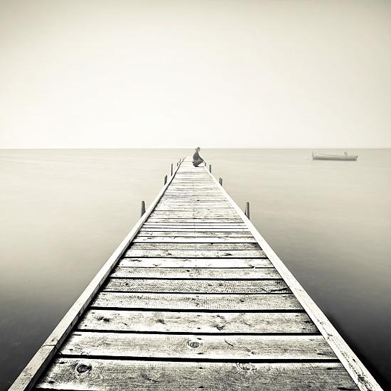 Ƹ̵̡Ӝ̵̨̄Ʒ عصفورةٌ مكسورةُ الجناح Ƹ̵̡Ӝ̵̨̄Ʒ Waiting_____by_angelreich.jpg