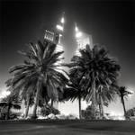 Dubai - Towers and Palms