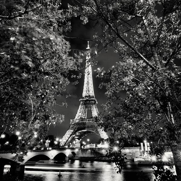 Paris Eiffel Tower In The Glow
