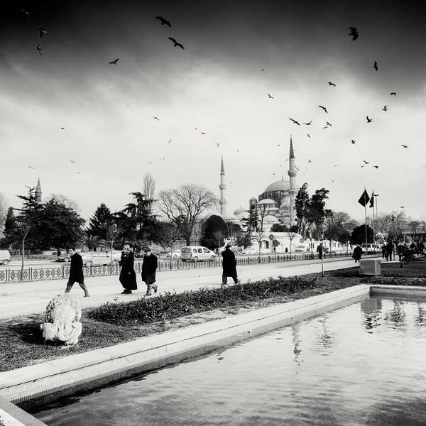 Istanbul Birds by xMEGALOPOLISx