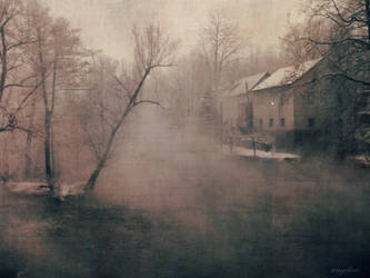 In the Mist IV by groby