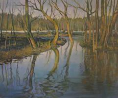 Flooding spring