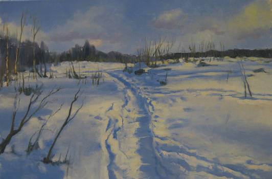 Track In The Snow2
