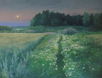 Moon over field by kahuella