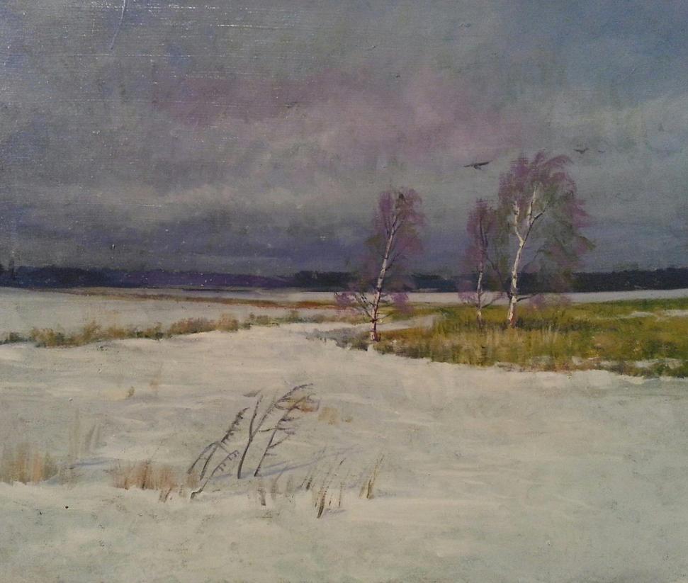 Sudden snow storm by kahuella