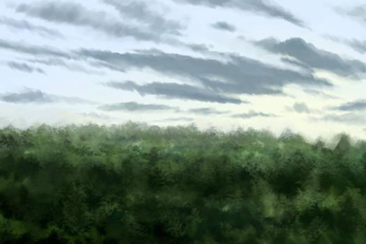 Landscape Life 06
