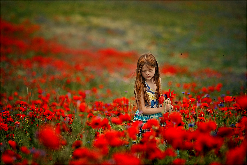 In red by fotouczniak
