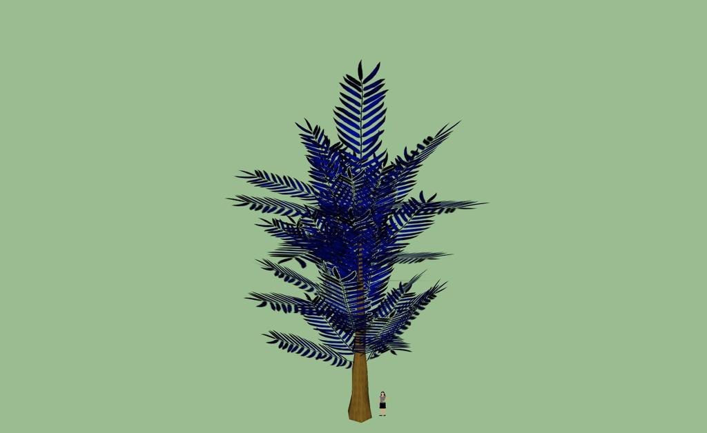 Ursa minan palm tree one by kingdragon01