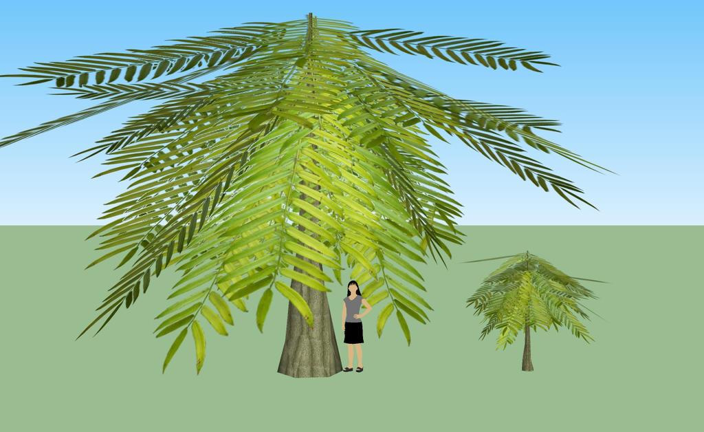 Similar  Ursa minan trees by kingdragon01