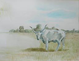 Hungarian Grey Cow WIP
