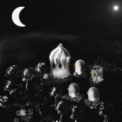 moonlight on domes