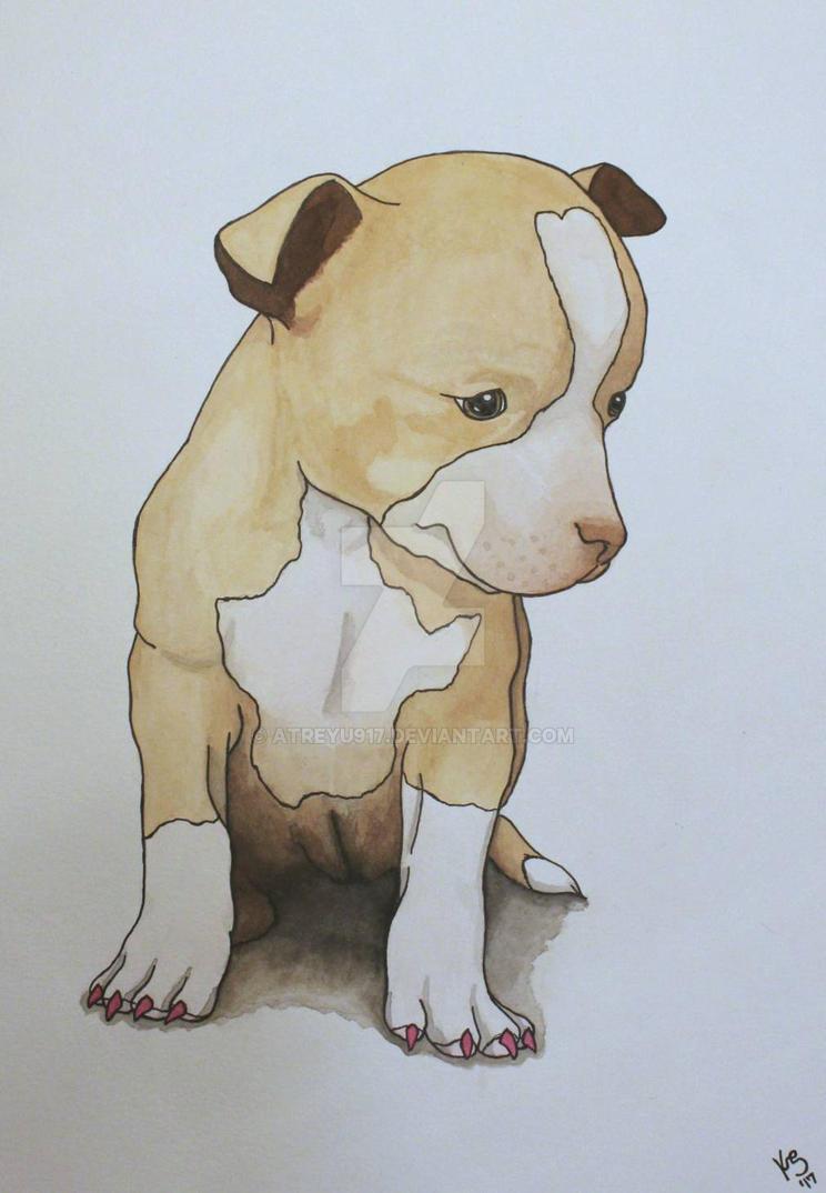 Chihuahua Puppy commission  by atreyu917