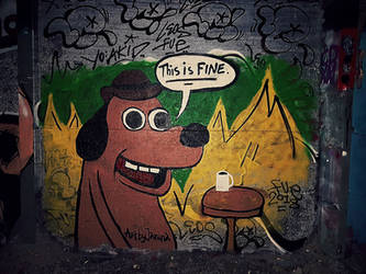 This is fine by janina