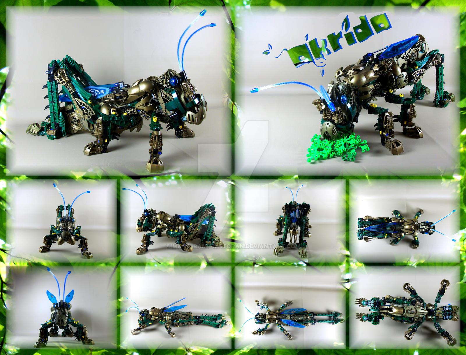 Bionicle MOC: Akrida by 3rdeye88