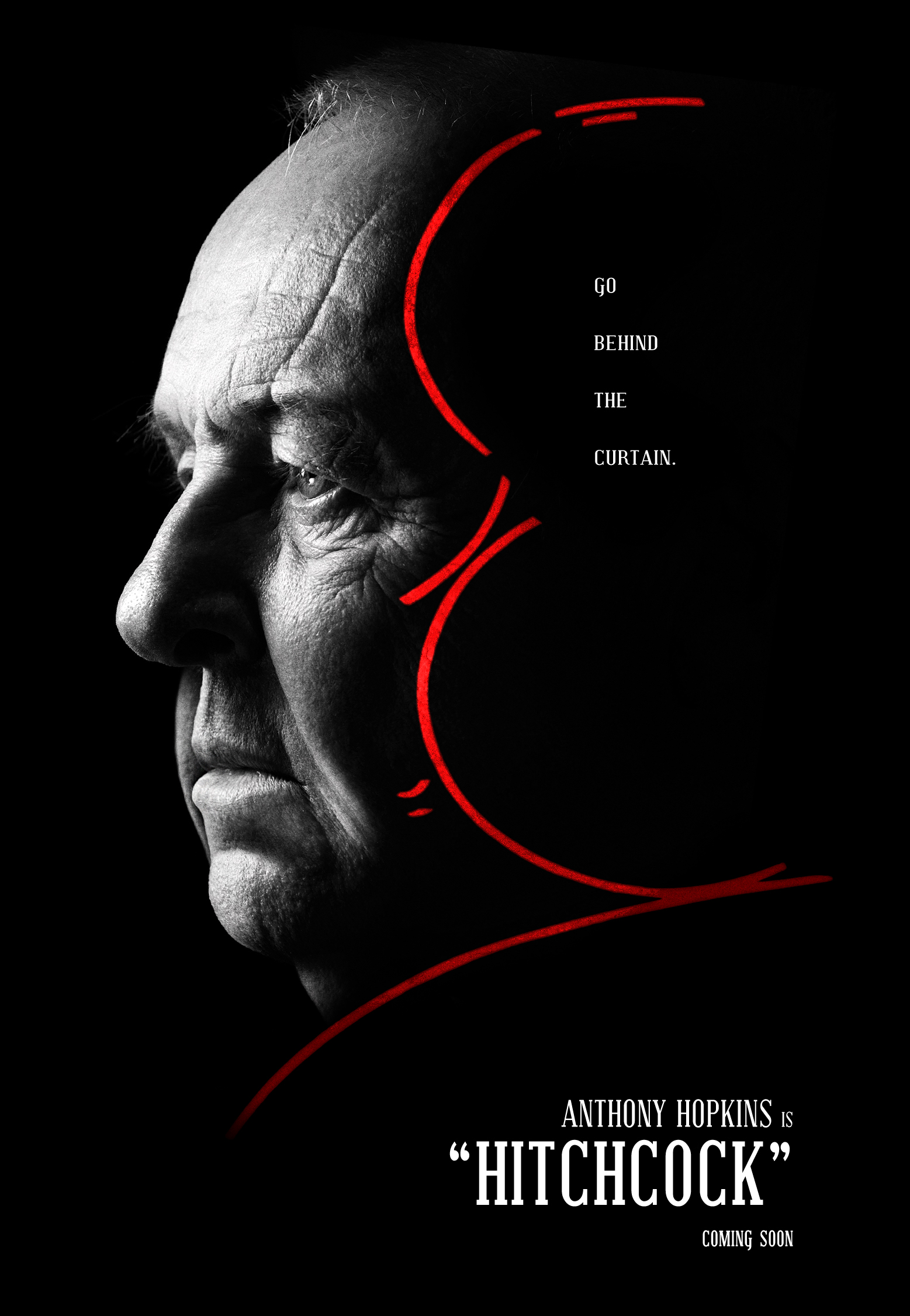 Hitchcock Biopic Teaser Poster by themadbutcher
