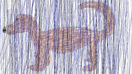a dog in the rain