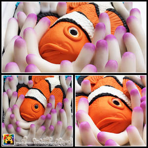 Journal Cover - Clownfish in anemone