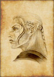 Zevran Arainai by HarlequinRavenwing