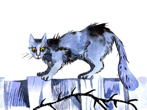 Catvember: Thorn